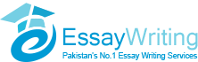 Essay Writing Pakistan: Blog