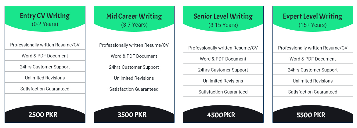 Entry Resume Prices In Pakistan